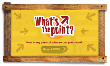 What's the Point game preview